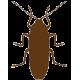 Средства для борьбы с тараканами
